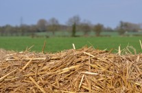 Latest RHI Guidance – January 2015